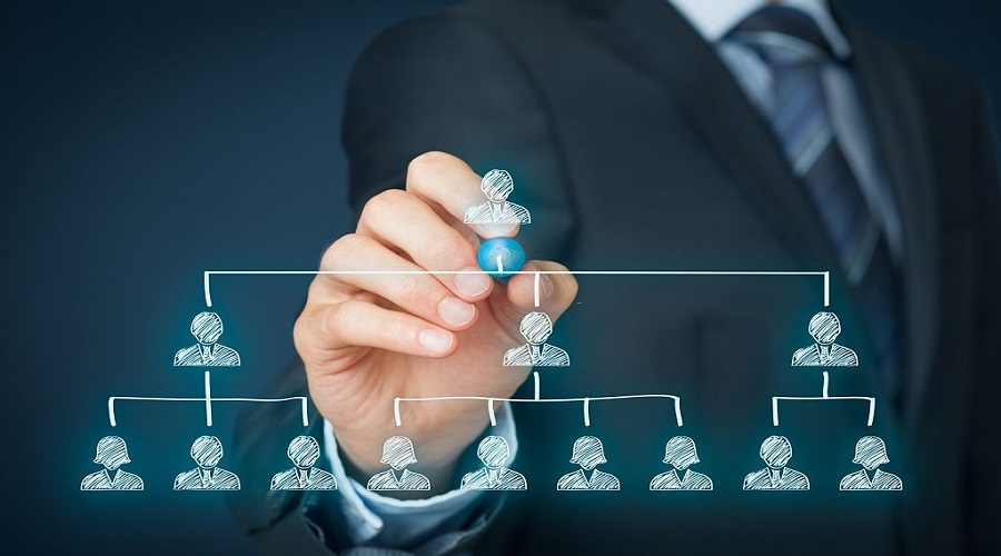 What types of organizational structure exist?